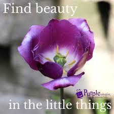 purple quotes to share those who love purple purpleologist