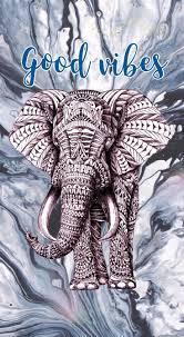 15707 elephant phone wallpaper 733 x 1334