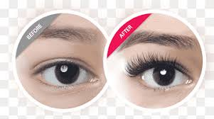lash png images pngwing