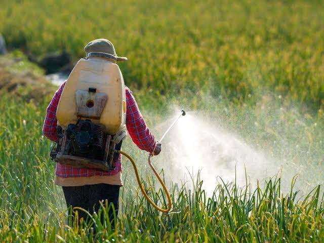 """Image result for Thailand Decides Against Pesticides Ban After U.S. Pressure"""""""