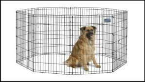 Top 10 Best Portable Outdoor Dog Fence Reviews 2020