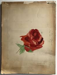 Ida Cook / Sketchbook 1905-1906 of original pencil drawings and ...
