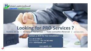 Image result for PRO Services images