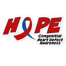 Chd Awareness Car Decal Congenital Heart Defect Bubble Free Etsy In 2020 Chd Awareness Congenital Heart Defect Heart Defect