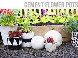 alisaburke cement flower pots