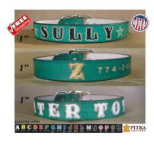 custom leather dog collar green large