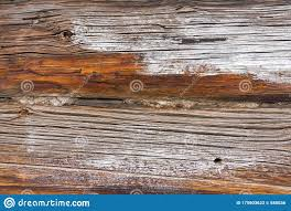 Old Wooden Wall Detailed Background Photo Texture Wood Plank Fence Close Up Stock Image Image Of Building Closeup 175903623