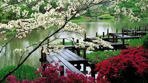 japanese garden wallpaper 8269