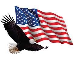 U S Flag Bald Eagle 36 X Large Vinyl Cut Out Sticker Sticker Lion