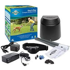 Petsafe Stay Play Compact Wireless Fence For Dogs And Cats From The Parent Company Of Invisible Fence Brand Above Ground Electric Pet Fence On Galleon Philippines