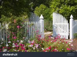 Garden Gate White Picket Fence Nature Stock Image 3985162