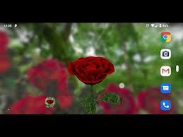 3d rose live wallpaper apps on google