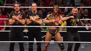 Adam Cole Wins The WWE NXT Title At Takeover (Photos, Video) - Wrestling  Inc.