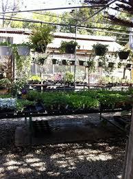 photos for fanick s garden center yelp
