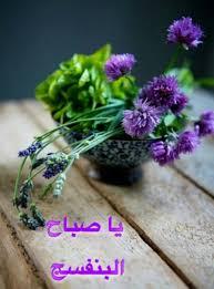 129 Best Rose Images Rose Good Morning Arabic Beautiful