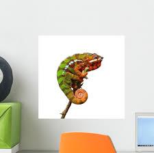 Chameleon Wall Decal Wallmonkeys Com
