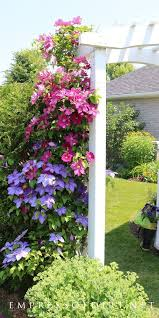 7 Capital Fencing Ideas Using Pallets Ideas 9 Affluent Clever Tips Quick Fencing Ideas Garden Fence Extender Privac In 2020 Plants Climbing Plants Garden Planning