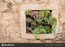 pot plants on wall small space