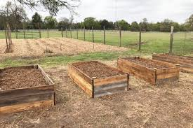 beginner s guide to back to eden gardening