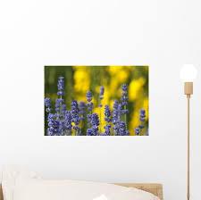 Purple Lavender And Yellow Wall Decal Wallmonkeys Com