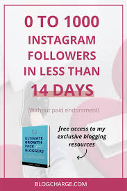 How To Go From 0 to 1000 Instagram Followers In 14 Days – Blog Charge