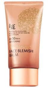welcos bb no make up face blemish