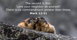 bible verses about the neighbor net