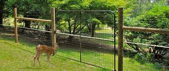 Deer Proof Garden Fence Some Nice Photos From Chris In Raleigh Induced Info
