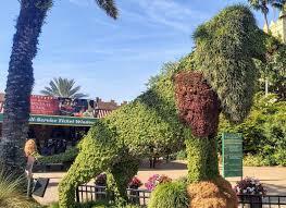 busch gardens ta 2020 all you