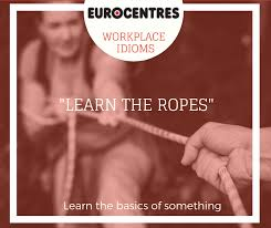 """To """"Learn the ropes"""" means to learn the... - Eurocentres ..."""