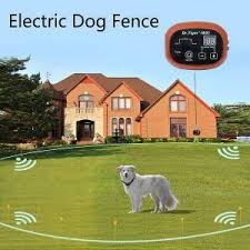 Pin On Top 12 Best Invisible Dog Fences In 2019 Reviews