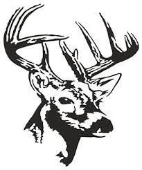 Bass Pro Shops Outdoor Action Decals Deer Bust Bass Pro Shops