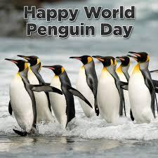 Happy World Penguin Day! And an extra... - KDKA-TV | CBS ...