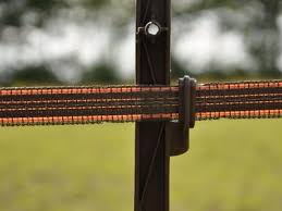 10x Gallagher Horse Post 1 25 M Terra Electric Fence Online