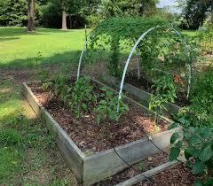 7 Common Mistakes In Raised Bed Gardening The Beginner S Garden