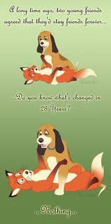 best fox and the hound images the fox the hound disney