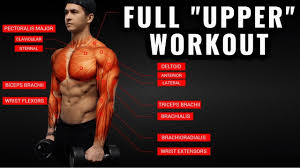 upper body workout for growth