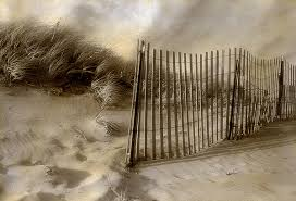 Beach Dune Fence By Elizabeth Holmes Hand Colored Photograph Artful Home