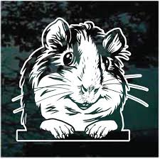 Cute Guinea Pig Decals Stickers Decal Junky