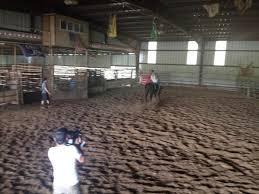 """Adventure Aaron' Carotta on Twitter: """"@PatAndJT save a horse ride ..."""