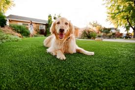 ▷🥇Pet Turf Spring Valley, Artificial Grass For Dogs Spring Valley Ca