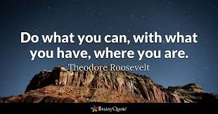 theodore roosevelt do what you can what you have