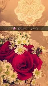 عبارات عن حب الورود مع أجمل الصور