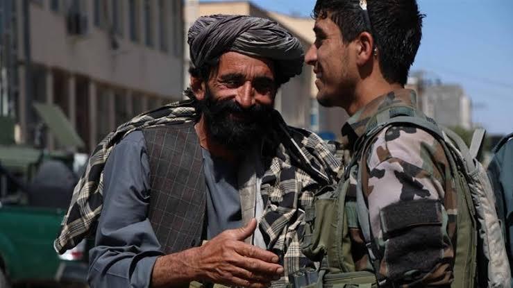 سروې: اکثریت افغانان د ټاکنو پر ځای سولې ته لومړیتوب ورکوي