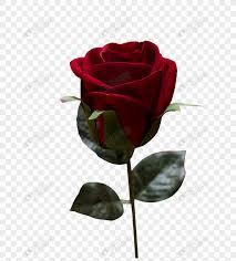 Lovepik صورة Png 400771219 Id الرسومات بحث صور وردة رومانسية