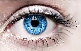 تحميل خلفيات العيون الزرقاء أنثى العين ماكرو عيون عريضة
