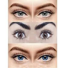 eyes gles sungles eyewears