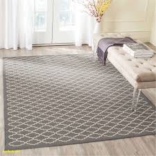 Bedroom Carpet Kids Room Rugs Rabbssteak House Procura Home Blog Bedroom Carpet