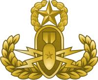 Eod Explosive Ordnance Disposal Master Badge Gold Decal Military Graphics