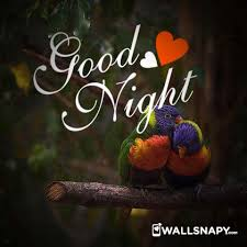 romantic good night love dp images